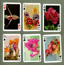 Collectible Non-standard playing cards Flowers & plants